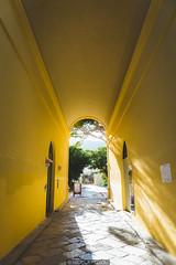 Yellow portal (Nicola Pezzoli) Tags: favignana sicilia sicily island egadi summer sea water colors nature canon tourism portal yellow walls tonnara stabilimento florio sun light