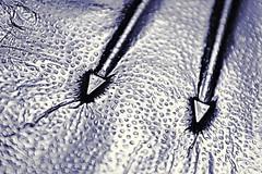 Impressions (Caroline.32) Tags: arrow macromondays aluminumfoil nikond3200 18140mmlens extensiontubes extensiontube20mm macro