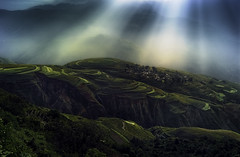 Sunlight in Dongchuan (Massetti Fabrizio) Tags: china cina sunrise sunlight kunming kumning dongchuan landscape landscapes terrace fields rural phaseone phaseonep40 phase panorami p40 schneider
