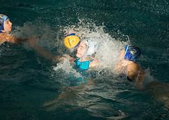 2C040413 (roel.ubels) Tags: len euro league waterpolo sport topsport utrecht uzsc 2016 krommerijn women