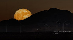 A November Super Moon (RedHatGal: Barbara Butler/FireCreek Photography) Tags: mojave supermoon hills desert windturbines kerncounty outdoor landscape fall nightfall barbarabutlerphotographyfirecreekphotography redhatgal