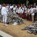 One Million Bones on the National Mall