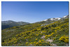 _JRR2845 (JR Regaldie Photo) Tags: mountain snow rocks nieve lagunas sierrademadrid peñalara jrregaldiephoto