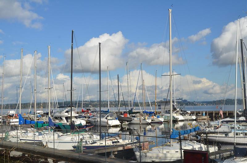 Leschi, Seattle WA - Neighborhood Guide - findwell