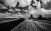 Wyrallah (erglis_m (Mick)) Tags: blackandwhite bw 20d landscape ir blackwhite interesting canoneos20d nsw infrared australianlandscape infraredfilter wyrallah wyrallahroad wyrallahnsw