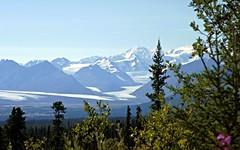 Spectacular Alaska! (JLS Photography - Alaska) Tags: morning summer mountain mountains alaska forest landscape landscapes woods scenery glacier glaciers borealforest mountainpeaks lastfrontier alaskansummer alaskalandscape alaskanscenery alaskanlandscape jlsphotographyalaska