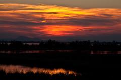 Tramonto sulla laguna (Chioggia) (martingabrielle) Tags: alberi mare giallo cielo tramonti sole acqua rosso riflessi canoneos controluce collieuganei martingabrielle