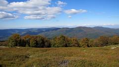 őszi táj / autumn scenery (debreczeniemoke) Tags: autumn mountains forest landscape land transylvania transilvania táj tájkép erdély ősz erdő hegyek rozsály canonpowershotsx20is igniş