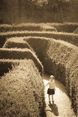 Girl In A Maze (Duncan Herring) Tags: girl monochrome hedge maze toned blenheimpalace duncanherring