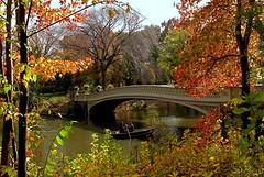 Autumn Romance (Eddie C3) Tags: newyorkcity autumn centralpark parks bowbridge autumncolor nycparks