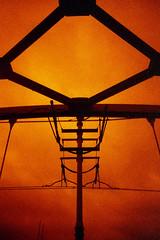 tram bridge (pho-Tony) Tags: camera red orange bird film night rollei 35mm lomography slim angle wide lofi wideangle ishootfilm plastic analogue viv vivitar hue uws nightbird filmisnotdead redscale vivitarultrawideandslim rolleinightbird filmrolleinightbird rolleinightbirdredscale