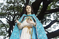 "Mater Dei (@iamjayarrb) Tags: santa catholic faith mary philippines mother grand manila historical procession tradition poon santo intramuros gmp marian pilipinas panata 2013 igmp prusisyon ""romancatholic"" igmp2013 ""intramurosgrandmarianprocession"" ""intramurosgrandmarianprocession2013"" ""virginmary"" ""lainmaculadaconcepcion"" ""grandmarianprocession"" ""mamamary"""
