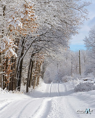 Winter in Rural Michigan, Montcalm County (Michigan Nut) Tags: road blue trees winter sky usa snow cold nature beautiful vertical countryside midwest michigan tracks trail snowscape johnmccormick michigannutphotography