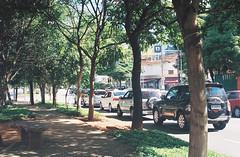 little bit of green. (dfactory) Tags: city cidade analog pentax sãopaulo kodak400 analógico analogcamera pentaxsuperme sometrees