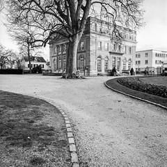 Parc et Mairie de Montmorency (B. Milanese) Tags: 50mm trix 400tx sl66 distagon xtol