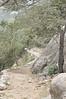 Exposición (bocatacalamares) Tags: del nikon camino paseo montaña mallorca niebla d90 archiduque