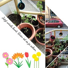Planted. #plant #balcony