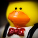 One Classy Duck