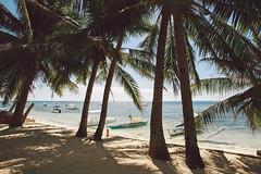 Alona beach (bortescristian) Tags: 2 beach canon island photography eos mark philippines x februarie ii bohol danao february cristian mk phillipines panglao 2014 alona bortes bortescristian cristianbortes