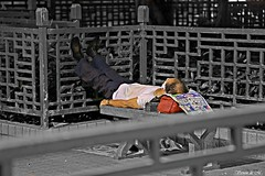 half. (Vernon de M) Tags: world life street old city bw white man black art love photography hongkong alone respect sleep homeless poor snap save help midnight survivor citizens scavenger hopeless humanbeings simplelife allseeingeye hardworking healtheworld hardearned