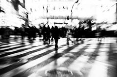 Shinjuku [3] (Brendan Ó Sé) Tags: shinjuku japan tokyo tokyoatnight thingstodointokyo urbanphotography blackandwhiteblur cityscape distort distorted distortedart distortion newart photographicpunctuation minimalblur minimal blur outoffocusphotography photographic punctuation tryingtoseewhatcanbeseenandhowtoseeit abstractblur blurlove bluritall blurred outoffocusart blurredart blurart blurwillsavetheworld bokeh bokey blurry streetblur blurincolour defocus blurphotography brendanblur blurs brendanósé art rebelsabú livelearnlove tokyostreetphotography japanstreetphotography abstractstreetphotography brendanóséphotography brendanó brendanoseapple brendanóséapple brendanóséapplephoto brendanoshea brendanosheaphotography brendanosheaapple iphonephotographeroftheyear2017 brendanóséiphonephotographeroftheyear2017 brendanóséphotographyworkshops brendanósétokyo brendanóséjapan sotokyo brendanóséshibuya