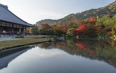 The World of Yugen  (Patrick Vierthaler) Tags:      2016      kyoto tenryuji tenryuuji yugen reflections beauty water autumn fall herbst herbstlaubfrbung momiji foliage pond teich symmetric reflection symmetrische reflektionen