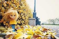 Memories from Stockholm (mademoiselleblythe) Tags: blythe custom zaloa mformonkey stellinna squeakymonkey stockholm fall october