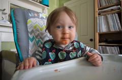Sweet potato madness (Boyd Shearer) Tags: fountains fayettecounty lexington downtown