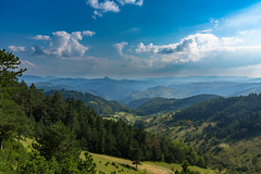 Untouched nature of Zlatibor, Serbia (Sladjan S) Tags: zlatibor serbia nature