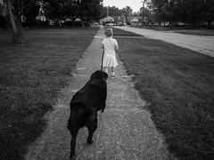 EP360967.jpg (mtfbwy) Tags: bw dog cocoa liliana