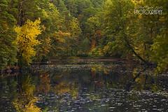 Autumn (pavel conka) Tags: autmn podzim color travel nature landscape conka 2016 voda les trees