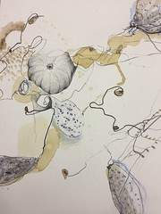 a kind of pumpkin, Zeichnung, 2016 (Ellen Ribbe) Tags: drawing pumpkin papier paper bleistift graphit kaffee coffee neocolor abstract abstrakt