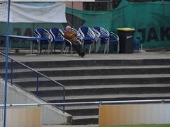 1. CfR Pforzheim II 1:1 FC 07 Heidelsheim (fchmksfkcb) Tags: fusball football soccer amateurfusball amateurfootball amateursoccer nonleague groundhopping pforzheim 1cfrpforzheim cfr vfrpforzheim 1fcpforzheim 1896 stadionholzhof holzhof fc07heidelsheim spvggfc07heidelsheim heidelsheim baden landesliga landesligamittelbaden