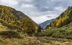 Rialp, Principat d'Andorra (kike.matas) Tags: canoneos6d kikematas canonef1635f28liiusm rialp ordino andorra andorre principatdandorra pirineos paisaje otoo montaas valle nature nubes bosque canon lightroom4