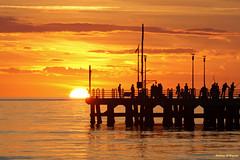 The pier in the sunset (Darea62) Tags: sunset seascape pier bridge fishers tramonto clouds sky versilia streetlights architecture people railing pontile