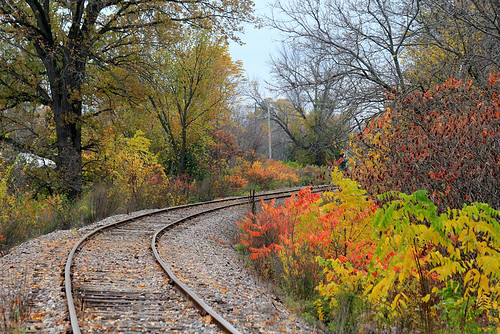 Old Railroad in Fall