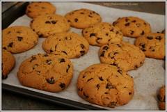 IMG_9055 (marinasmartcookie) Tags: americancookies recipes