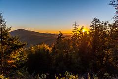 Smoky Mountains (blue5011b) Tags: sunset smokymountains blueridgeparkway asheville nc forest trees landscape nikon d700 2470mm