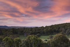 Farm II (Eduardo_il_Magnifico) Tags: colour color sky sunset clouds trees grass farm outdoors rural armidale invergowrie newengland newsouthwales nsw australia nikond750 tamron90mmmacrovcusm nisi 3stophardgrad tripod