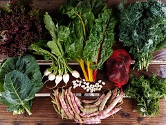 Suzie's CSA Box, Week of Oct. 24 - 30