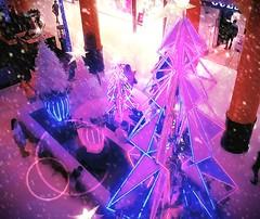https://foursquare.com/v/4b05d8c5f964a52048e422e3 #merryChristmas #holiday #travel #trip #shopping #Asia #Malaysia #selangor #petalingjaya #Sunwaylagoon # # # # # # # # (soonlung81) Tags: merrychristmas holiday travel trip shopping asia malaysia selangor petalingjaya sunwaylagoon