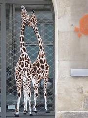 Graff in Paris - Sophie Photo (brigraff) Tags: streetart collage pastedpaper pasteup wheatpast paris sophiephoto sophie photo foto brigraff girafe