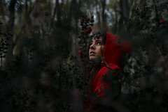 Hide & Seek (Arianna Ceccarelli Photography) Tags: girl woods forest red green dark mood photography photographer face eyes light fantasy surreal conceptual fineart art nikon woman people portrait berries