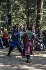 LRM_EXPORT_20161016_214312 (Omar Reina) Tags: medievo medieval caballo espadas caballeros danzantes bufon antorcha bailarinas arabes halcon acrobacias justas duelos batallas