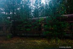 DSC_1582 (andrzej56urbanski) Tags: chernobyl czaes ukraine pripyat prypeć prypyat kyivskaoblast ua