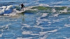 California Surf (wandala2012) Tags: marinheadlands marinmagazine muirbeach surfer escape nature pacificoceanview
