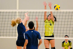 2016 Extramural Volleyball vs. Humber North-25 (centennial_colts) Tags: green scream 2016 2016ocaa extramural centennial colts centennialcolts college humber volleyball mens womens coed