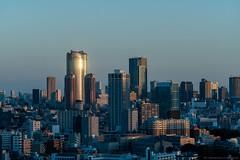 2016_10_27_Shinagawa_Mornings_003_HD (Nigal Raymond) Tags: jetlag sky sunrise dawn metropolis cityscape shinagawa tokyo japan         sonya7r2 a7r2 sonya7rii a7rii sonyalpha sonyphotography sonyimages lightroom65 lr6 nigalraymond  wwwnigalraymondcom