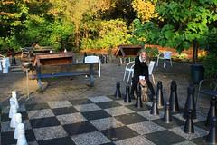 IMG_8882_Fotor01 (Ela's Zeichnungen und Fotografie) Tags: hannover congresszentrum stadt stadtpark landschaft natur herbst bäume laub blätter sonnenlicht person frau schach spiel