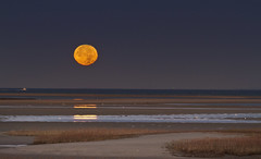 Morning Moon Set (brucetopher) Tags: supermoon super moon beaver beavermoon fullmoon full moonrise water sky beach sea marsh saltmarsh pink blue orange yellow headland seagrass grass beauty peace peacefull sunset rise skies twilight morning dawn hdr reflection reflect